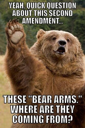 funny bear picture - right to bear arms